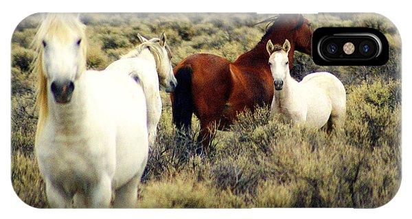 Nevada Wild Horses IPhone Case
