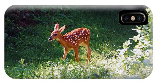 New Backyard Visitor IPhone Case