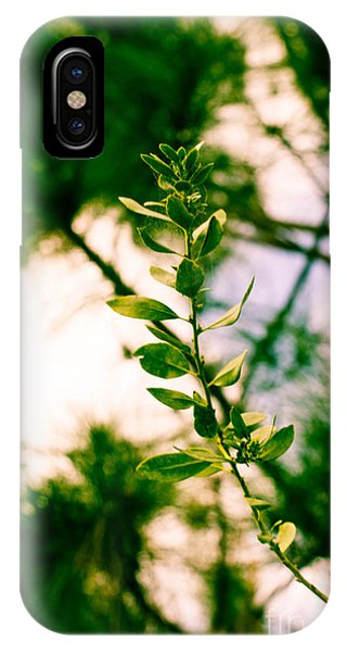 iPhone Case - New Life by Michael Rados