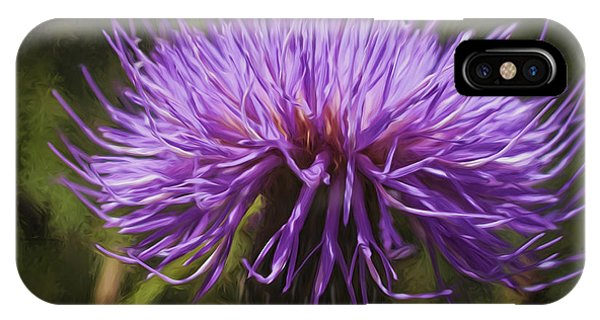 New Mexican Thistle IPhone Case