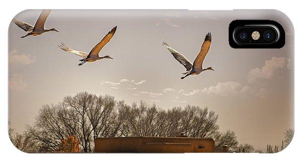 Flight Of The Cranes IPhone Case