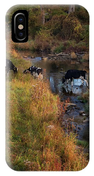 New York Country Life IPhone Case