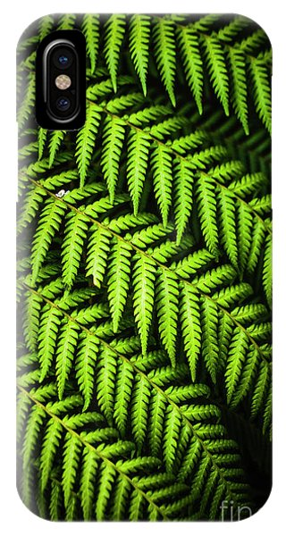 Garden Wall iPhone Case - Night Forest Frond by Jorgo Photography - Wall Art Gallery