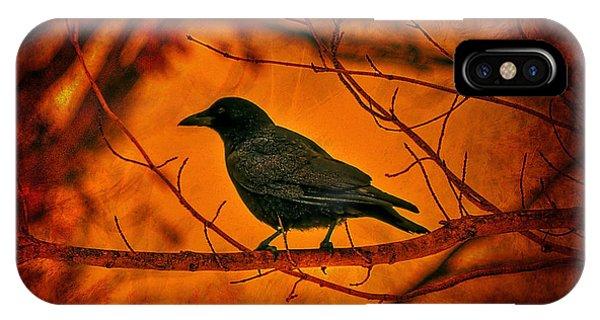 Crow iPhone Case - Night Guard by Evelina Kremsdorf