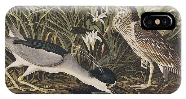 Night Heron Or Qua Bird IPhone Case