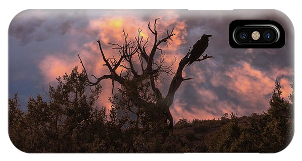 Night Of The Raven IPhone Case