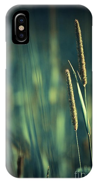 Night Whispers IPhone Case