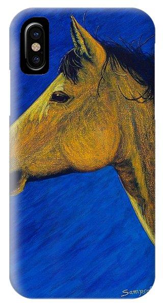 iPhone Case - Night Wind by Cynthia Sampson