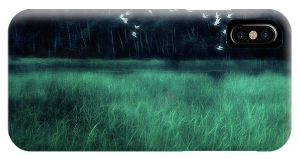 Teal iPhone Case - Nightbirds by Priska Wettstein