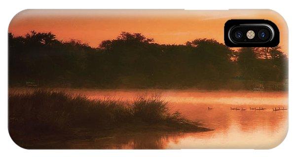 Nightfall Ducks IPhone Case