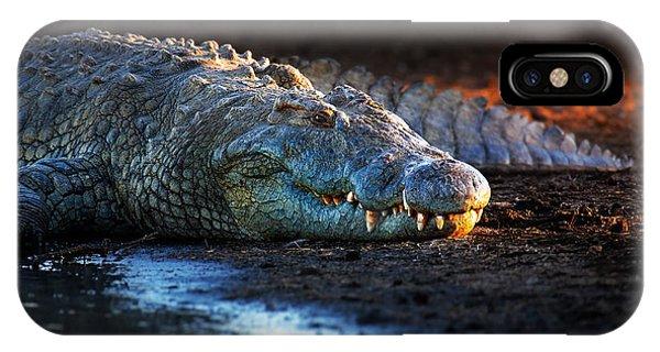Angle iPhone X Case - Nile Crocodile On Riverbank-1 by Johan Swanepoel