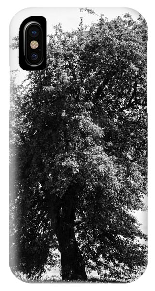 Nina Tree Dressed Out Bw IPhone Case
