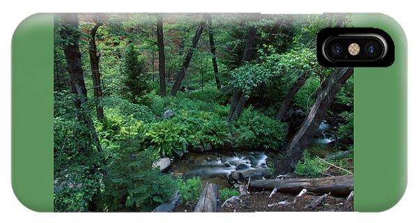 Nine Mile Creek - Golden Trout Wilderness IPhone Case