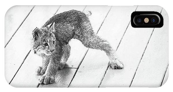 Ninja Lynx Kitty Bw IPhone Case