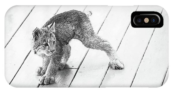 IPhone Case featuring the photograph Ninja Lynx Kitty Bw by Tim Newton