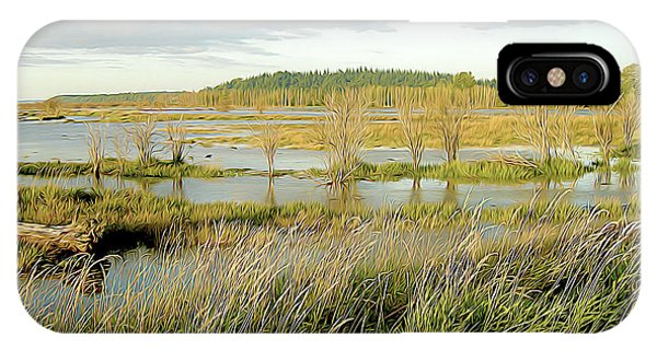 Nisqually Tide Coming In IPhone Case