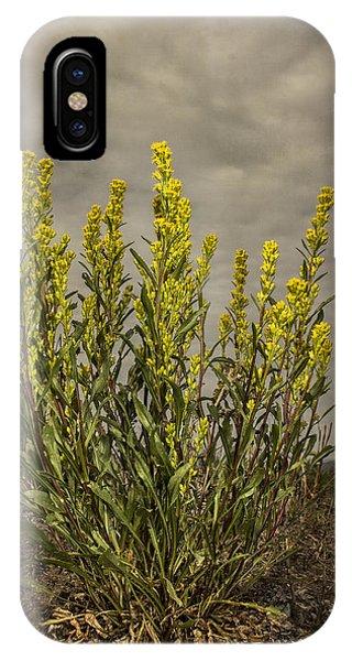 Nizina River Goldenrod IPhone Case