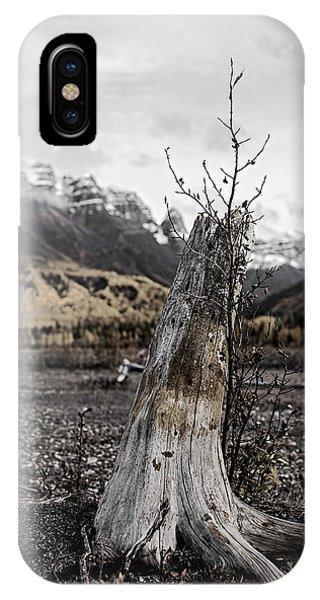 Nizina River Tree Stump IPhone Case