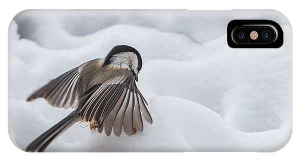 Chickadee - Wings At Work IPhone Case