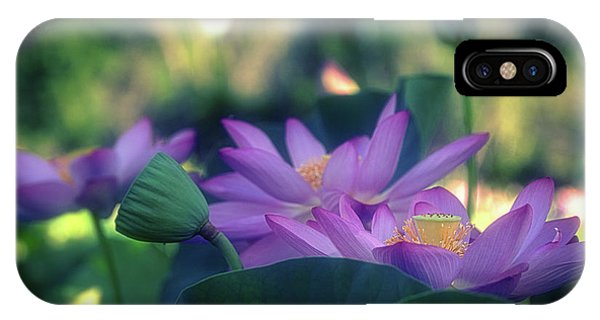 IPhone Case featuring the photograph No Mud, No Lotus by Cindy Lark Hartman
