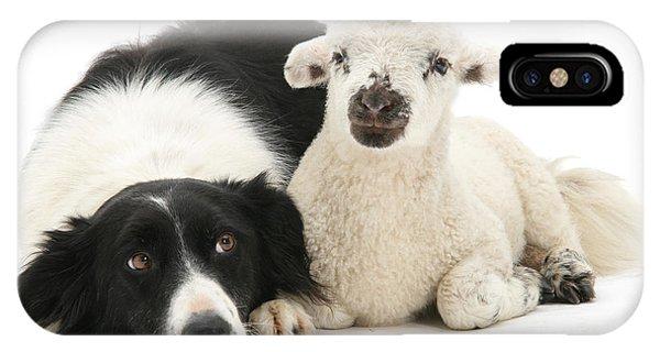 No Sheep Jokes, Please IPhone Case