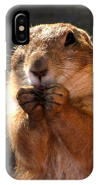 Snacking Prairie Dog IPhone Case
