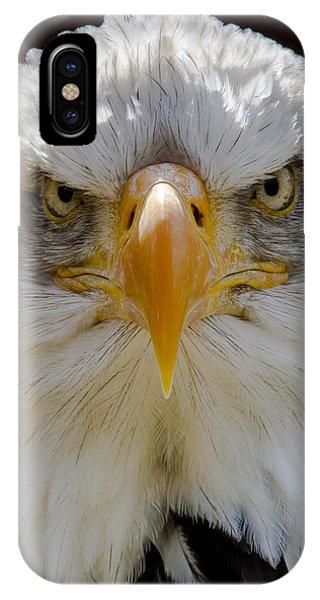 North American Bald Eagle  IPhone Case