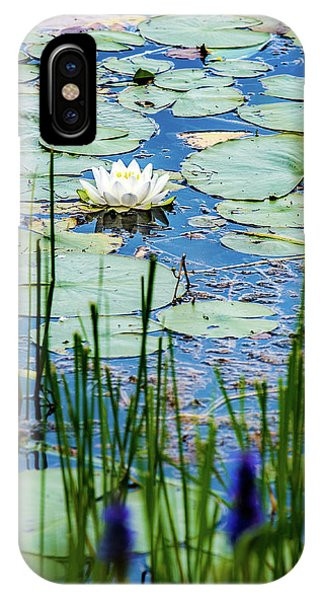 North American White Water Lily IPhone Case