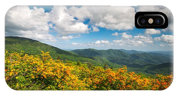 Appalachian Mountains iPhone Case - North Carolina Roan Mountain Flame Azalea Flowers Appalachian Trail by Dave Allen