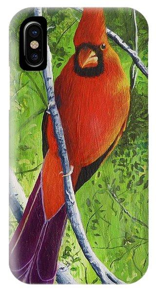Northern Cardinal 1 IPhone Case