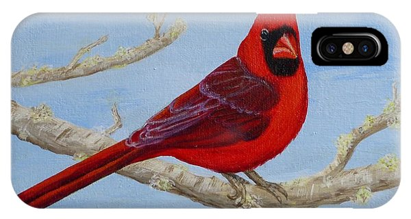 Northern Cardinal 2 IPhone Case