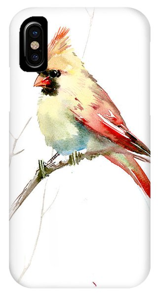 Northern Cardinal,female IPhone Case