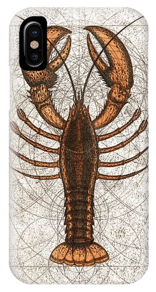 Northern Lobster IPhone Case