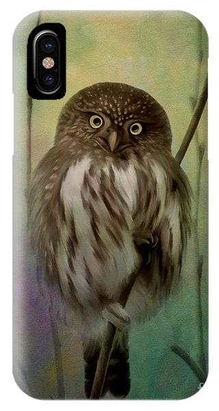 Northern Pygmy Owl  IPhone Case