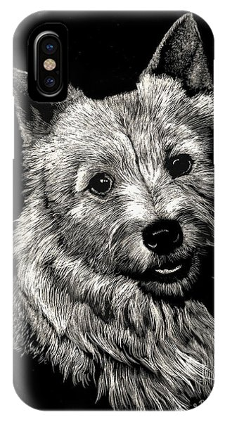 Norwich Terrier IPhone Case