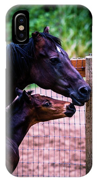 Nose To Nose IPhone Case