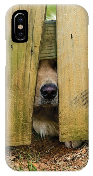 Nosy IPhone Case