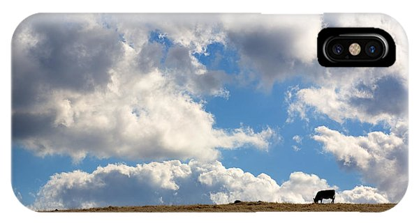 Cloud iPhone Case - Not A Cow In The Sky by Peter Tellone