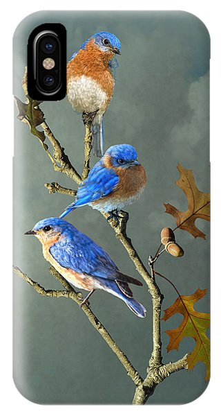 Nothing But Bluebirds IPhone Case