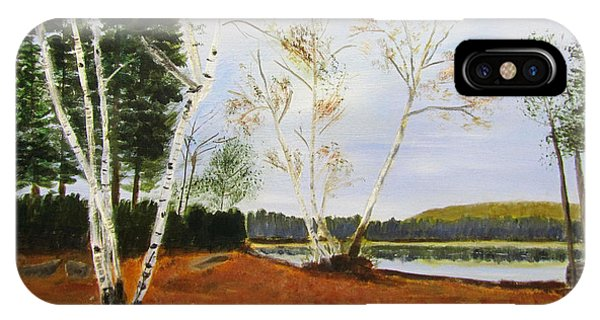 IPhone Case featuring the painting November Day by Linda Feinberg