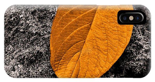 November Leaf IPhone Case