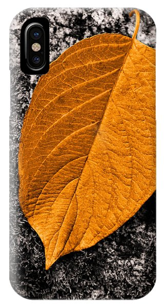 November Leaf IPhone Case