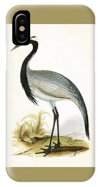 Numidian Crane IPhone Case