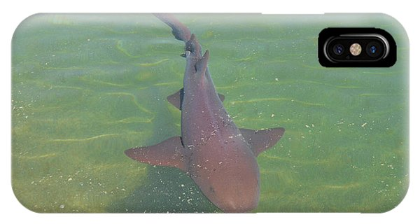 Nurse Shark IPhone Case