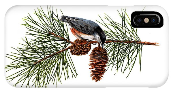 Nuthatch 1 IPhone Case