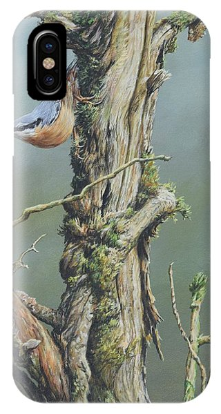 IPhone Case featuring the painting Nuthatch by Alan M Hunt