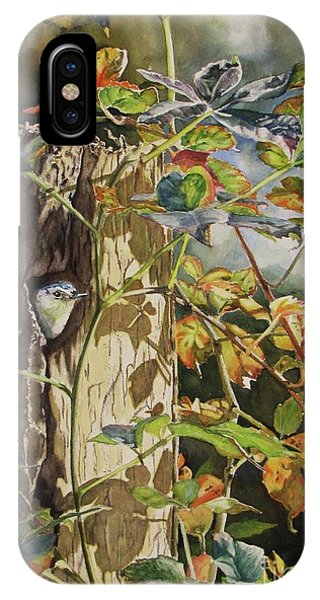 Nuthatch And Creeper IPhone Case