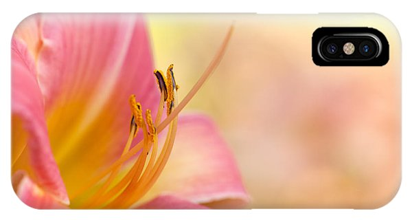 O That Summer Passion IPhone Case