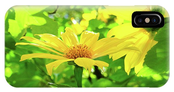 Oahu Sunshine IPhone Case