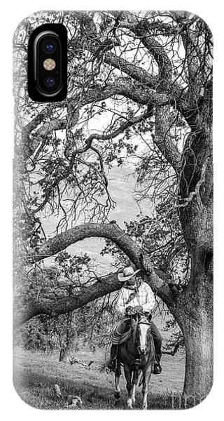 Oak Arches IPhone Case